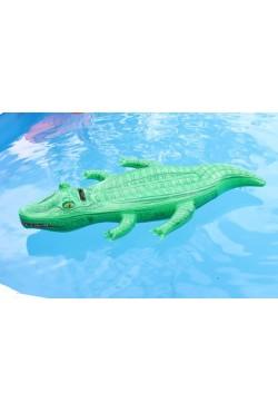 Crocodile 168cm
