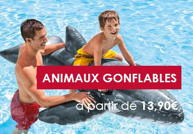 Animaux Gonflables
